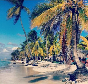 Saona Island. (looks like the one you see in magazines, advertisements or on T.V!