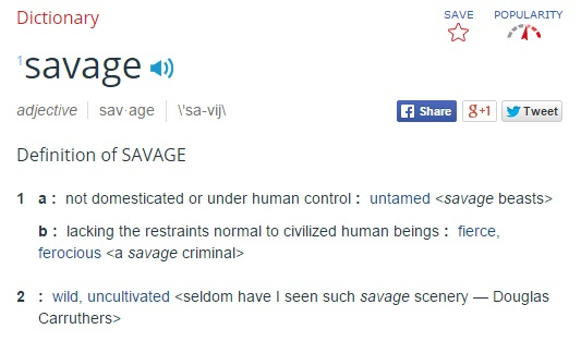 bae definition slang