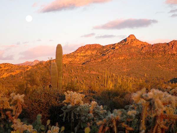 desert_sunset