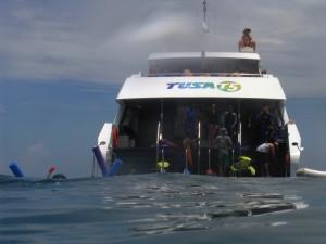 Cairns2010 154