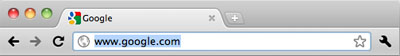 URL selected in Chrome Address Bar